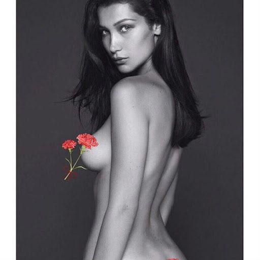 Bella Hadid Nude Pics